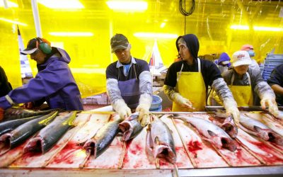 Alaska's Rural Fishing Communities Are The Next Front Line Of COVID-19