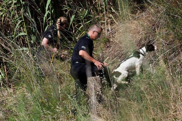 German Prosecutors Dash Hopes of Finding Madeleine McCann Alive