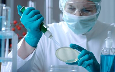 Missed the biotech breakout? These stocks in the industry are still set to run, MKM says