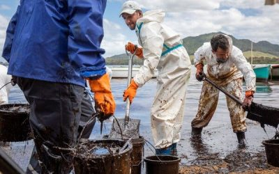 'This Is Unforgivable': Anger Mounts Over Mauritius Oil Spill