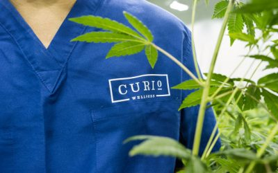 Curio Wellness launches $30M fund to help women and minorities own a cannabis dispensary