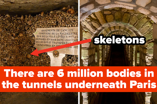 22 Cool Paris Facts Most People Go Their Whole Life Without Knowing